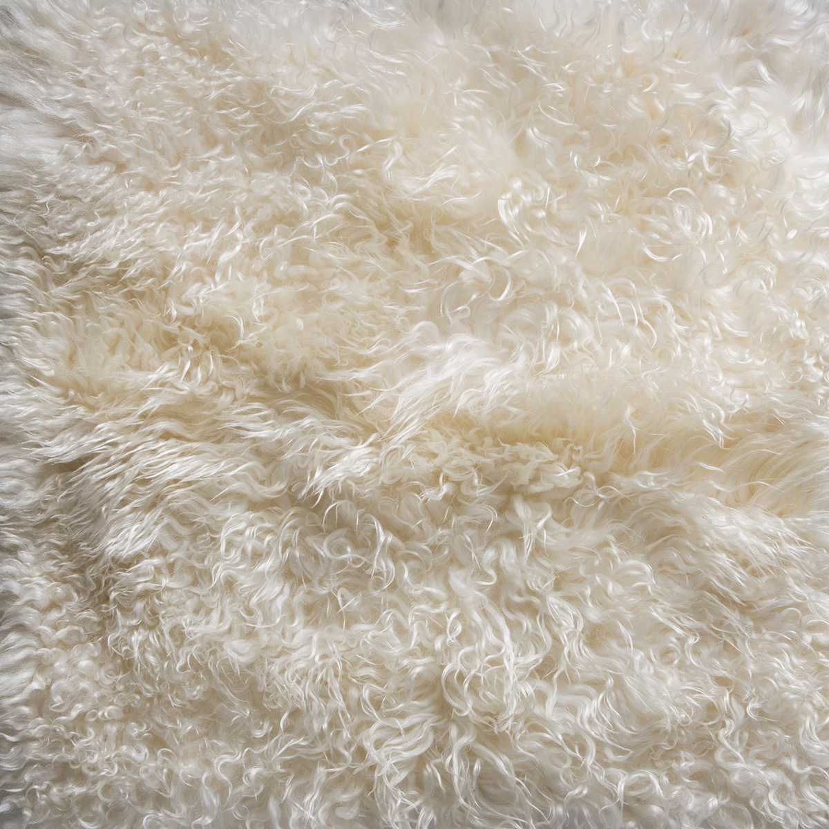 Hand Crafted Antartic Full Optic Frosted Rug